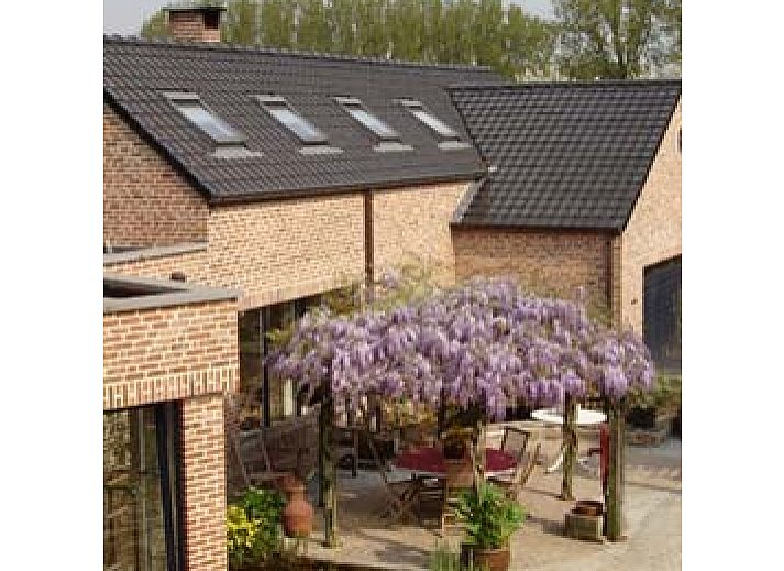 Guest house 030701 • Bed and Breakfast Flemish Brabant • Gastenverblijf Wisteria