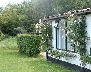 Guest house 010149 • Holiday property Texel • texeldewonne