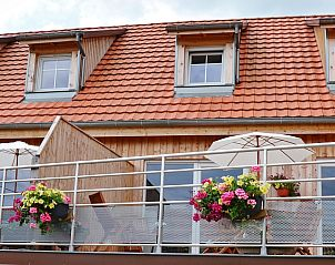 Guest house 0373303 • Apartment Alsace • Vakantiehuis in Nothalten, in Elzas.