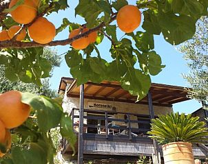 Guest house 06241401 • Holiday property Crete • Natuurhuisje in Kalyvitis, orino