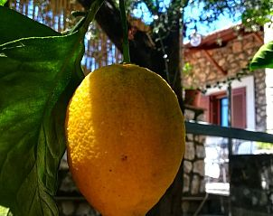 Guest house 0916802 • Apartment Campania / Naples • Vakantiehuis In Vico Equense (Iks104)