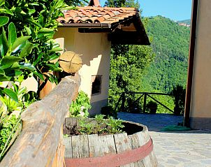Guest house 095113750 • Chalet Tuscany / Elba • Buffardello del Colle