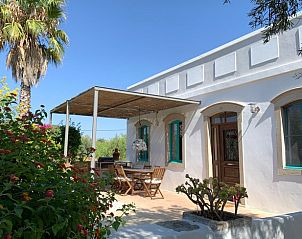Guest house 1273412 • Holiday property Algarve • Natuurhuisje in Moncarapacho
