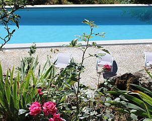 Guest house 13137001 • Holiday property Vale do Tejo • Natuurhuisje in (covelo,) tonda, tondela