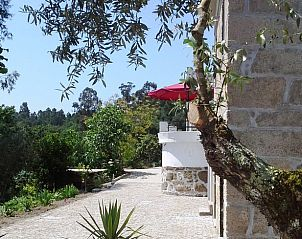 Guest house 13137002 • Holiday property Vale do Tejo • Natuurhuisje in (covelo,) tonda, tondela