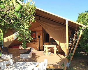 Guest house 1316685 • Apartment Mediterranean region • Campo Portakal Eco Glamping