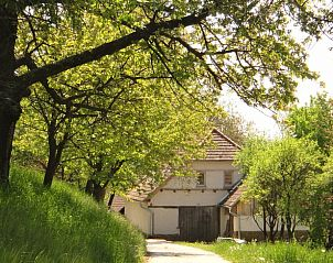 Guest house 1400101 • Holiday property Trencin • Natuurhuisje in Brestovec