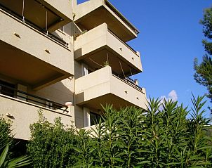 Guest house 1609306 • Apartment Mallorca • appartement  tekoop