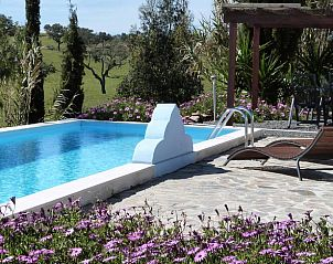 Guest house 1850101 • Holiday property Northern Portugal • Natuurhuisje in Cercal do alentejo